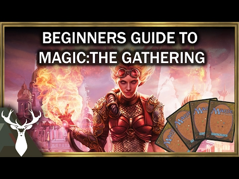 A Beginners Guide to Magic: The Gathering