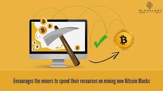 Blocklogy - Bitcoin Mining & Rewards