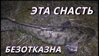 Ловля налима на канале им москвы