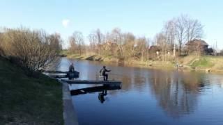 Рыбалка на ижоре в коммунаре