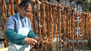 Shaoxing special dishes made after 30 days——Dried plum