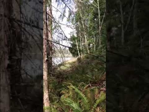Video Of Rocky Point Campground, WA
