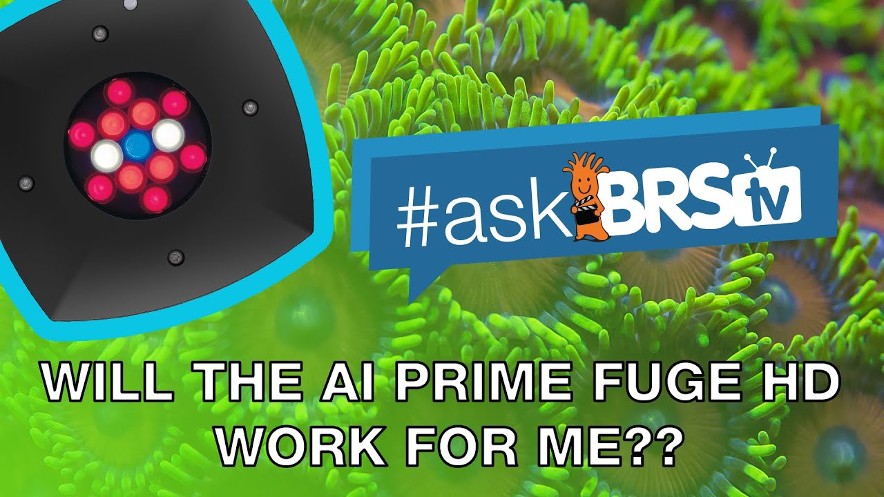 PAR, spectrum and spread of the AI Prime Fuge HD for refugium lighting? - #AskBRStv
