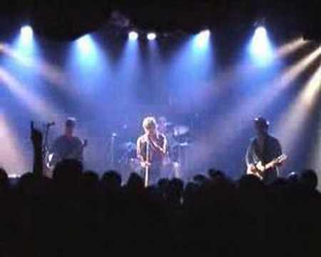 The FLESHTONES - Live Genève 17 mai 2008
