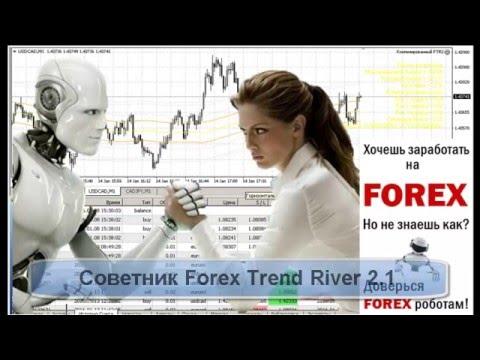 Онлайн курсы форекс доллар