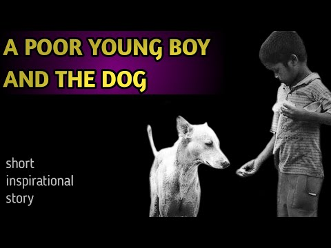 Inspirational story | a poor young boy and the dog | latest inspirational stories | i 4 inspiration