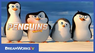 [Official] First Four and a Half Minutes | PENGUINS OF MADAGASCAR