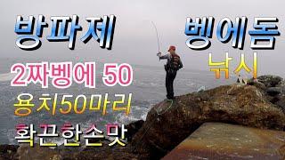 Redondo jetty fishing OPALEYE