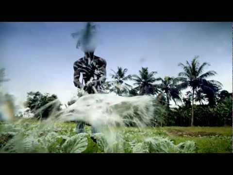 Raindrops Lyrics ~ 2Face Idibia