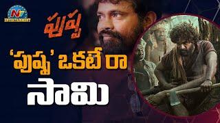 పుష్ప ఒకటే రా సామి | Allu Arjun | Box Office |