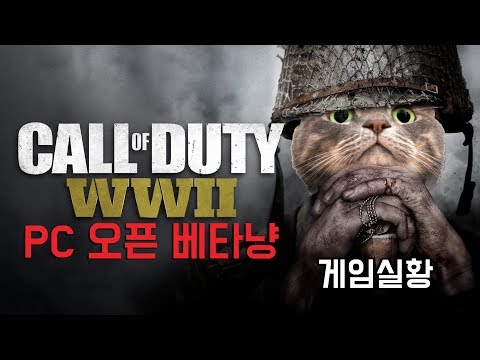 Steam Community :: Call of Duty: WWII - PC Open Beta