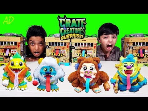 Crate Creatures Surprise Toys Surprises Unboxing Fun Playtime