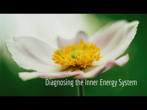 Assessing your subtle energy system