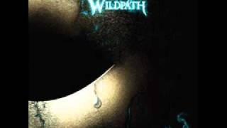 WILDPATH - DIVE
