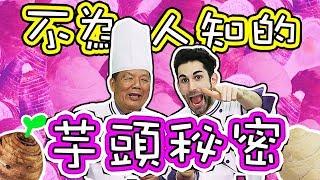 法國芋頭控去大甲找台灣最好吃的芋頭酥 🤩🍆💜 THE BEST TARO PASTRY IN TAIWAN??