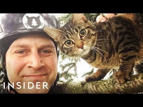 Meet the Brothers Who Rescue Cats in Trees