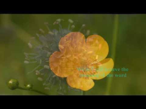 Rita Coolidge - I'd Rather Leave While I'm In Love (w/ lyrics)