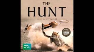 Alpines - I put a spell on you (BBC - The Hunt Soundtrack)