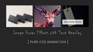 How to put image in text using css background clip property