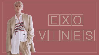 EXO vines to watch on the way to fight antis