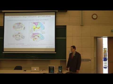 A látás hatása a tanulásra