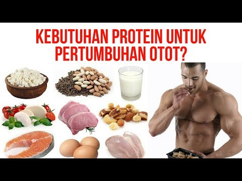 Protein lemak karbohidrat yang harus menurunkan berat badan