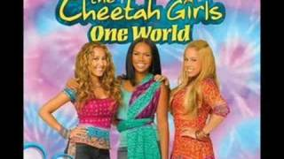 Cheetah Girls: Fly Away