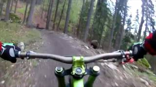 Bikers Get Chased By ANGRY Bear On Trail in Slovakia! (SCARY)