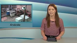 TV Budakalász / Budakalász Ma / 2021.01.28.