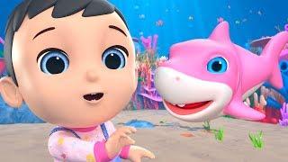 Baby Shark Song | Nursery Rhymes & Kids Songs   Little Treehouse