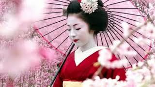 Mùa  xuân sang có hoa Anh Đào.  Ngọc Lan