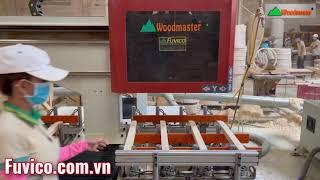 Máy đục mộng âm cnc Woodmaster được sử dụng nhiều trong các nhà máy chế biến gỗ xuất khẩu