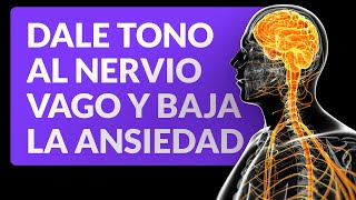 Exercises To Tone The Vagus Nerve And Lower Anxiety