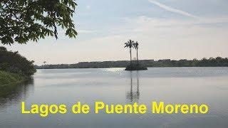 Veracruz Desconocido - LAGOS de PUENTE MORENO Parte 3