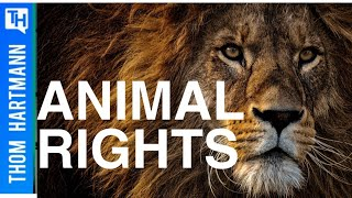 What Are The Rights of Animals?