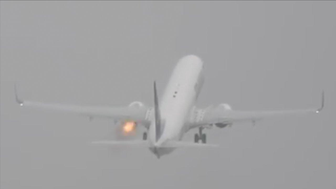 Почему птицы сталкиваются с самолетами?