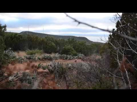 Hog Hunting Video | Los Plumas Ranch Texas