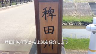 稗田川穴場バスフィシングスポットブラックバス