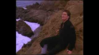 "David Hasselhoff - ""Flying On The Wings Of Tenderness"" Official Music Video"