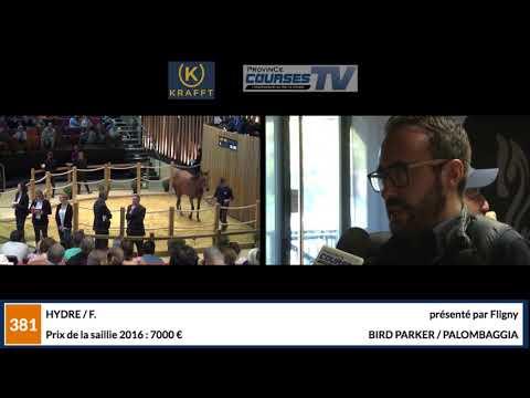 Vidéos Province Courses