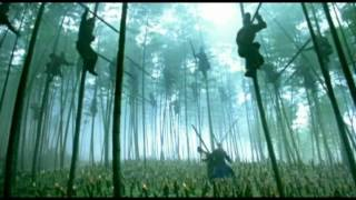 House of Flying Daggers (2004) Video