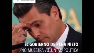 Video: #endimpunity es necesario que el gobierno de EPN asuma compromiso político para combatir los
