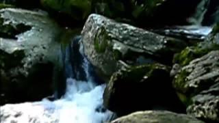 Titulo do video