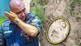 Boy Vanishes Without A Trace, Then Dog's Footprints Lead Police To Full Story