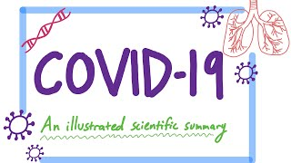 Covid-19:  An Illustrated Scientific Summary