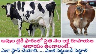 ఆవుల డైరీతో నెలకు లక్ష | How to Earn One lakh per Month in cow Farm Telugu | Dr. Madankumar Vet