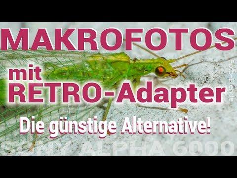 Makrofotos mit der Sony Alpha 6000 und RETROADAPTER - ohne Makroobjektiv!!