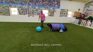 Teach dog to control a ball