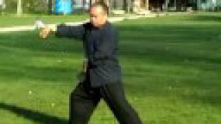 Chen Taiji - 48 step form