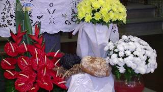 Festival of Senhor Bom Jesus - Ponta Delgada 2016